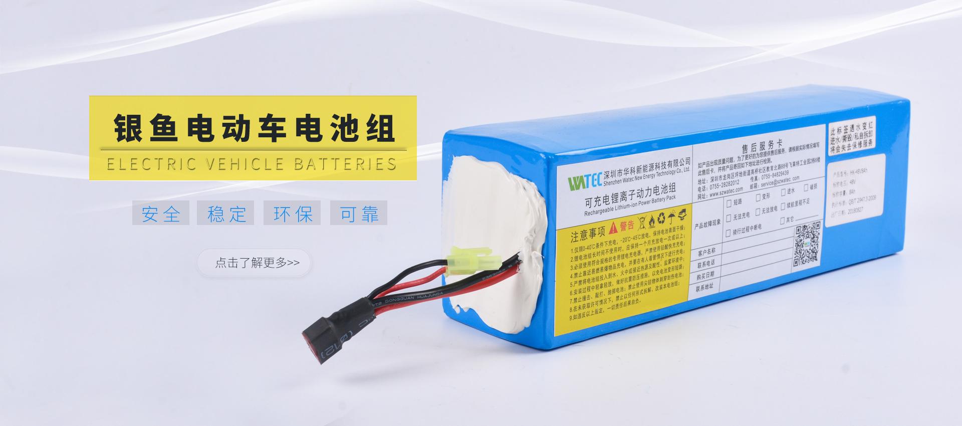 银鱼电动车电池组